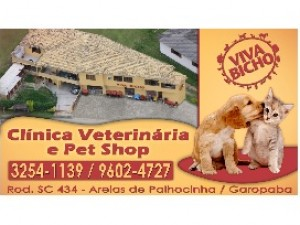 Viva Bicho - Cl�nica Veterin�ria e Pet Shop