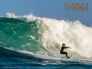 Silveira big swell - galeria fotos aquaticas.